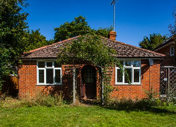 Thumbnail 2 bed bungalow to rent in 43 Springhill Road, Goring On Thames