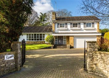 Thumbnail 5 bed detached house for sale in Chauntry Road, Maidenhead, Berkshire