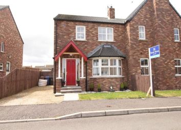 Thumbnail 3 bed semi-detached house for sale in Tides Bank, Portavogie, Newtownards
