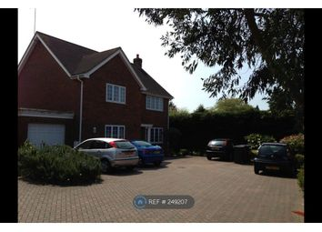 Thumbnail Room to rent in Ashbury Close, Hatfield