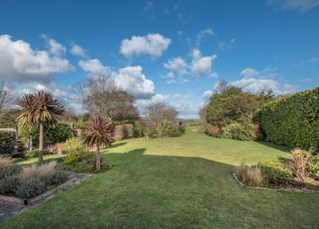 Thumbnail 4 bed detached bungalow for sale in Forest Road, Winford, Sandown, Isle Of Wight