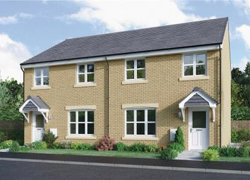 "Thumbnail 3 bedroom mews house for sale in ""Meldrum Mid"" at Bellenden Grove, Dunblane"