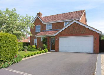 Thumbnail 4 bedroom detached house for sale in Celtic Drive, Anna Fields, Andover