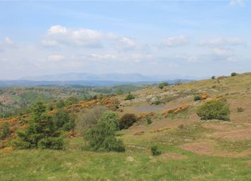 Thumbnail Land for sale in Lords Lot - Lot 2, Crosthwaite, Kendal, Cumbria
