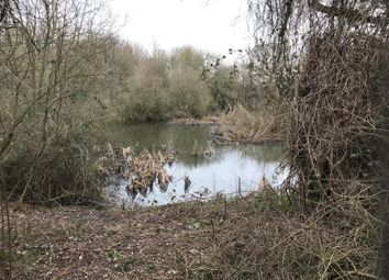 Thumbnail Land for sale in Land & Lake Church Lane, West Hanningfield, Chelmsford