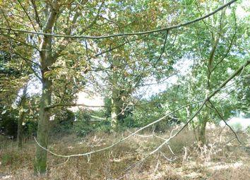 Thumbnail Land for sale in Wootton Drift, Edward Benefer Way, King's Lynn, Norfolk