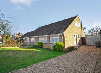 Thumbnail 4 bed semi-detached bungalow to rent in Oakwood Road, Sturry, Canterbury