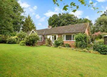 Thumbnail 4 bed detached bungalow for sale in Tillington, Herefordshire