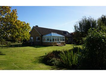 Thumbnail 4 bed detached bungalow for sale in Cross End, Halstead