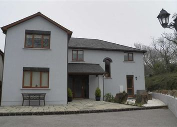 Thumbnail 5 bed detached house for sale in Ocean View, Pendine, Carmarthen