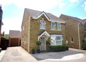 Thumbnail 4 bed detached house to rent in Brancaster Drive, Great Notley, Braintree