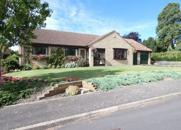 Thumbnail 3 bed bungalow for sale in Bullens Close, Ilton, Ilminster