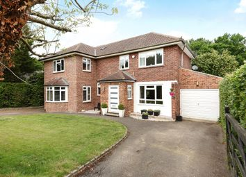 Thumbnail 4 bedroom detached house for sale in Harpesford Avenue, Virginia Water