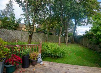 Threshold Park, Village, East Kilbride G74
