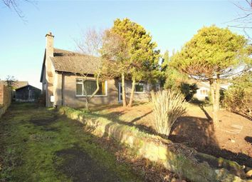 Thumbnail 2 bed semi-detached bungalow for sale in 20, Drumcarrow Road, St Andrews, Fife