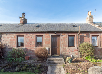 Thumbnail 2 bed terraced bungalow to rent in 19 Henry Street, Kirriemuir