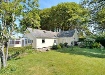 Thumbnail 3 bed bungalow for sale in Mere, Warminster
