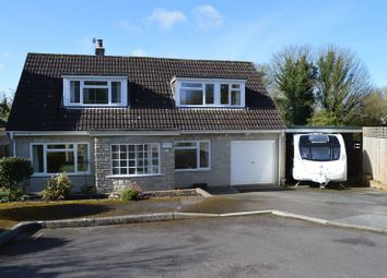 Thumbnail 3 bedroom detached house for sale in Paddock Close, Shaftesbury