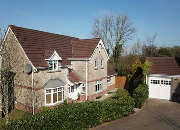 Thumbnail 4 bed detached house for sale in Morley Drive Crapstone, Yelverton