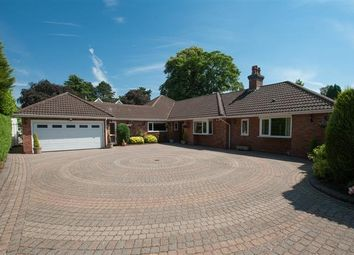 Thumbnail 4 bed detached bungalow for sale in Streetly Lane, Four Oaks