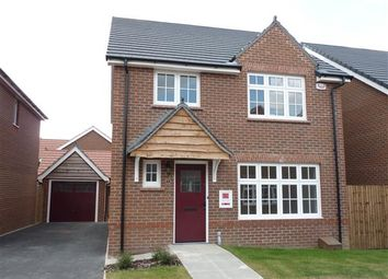 Thumbnail 4 bed detached house to rent in Spall Close, Scartho Top, Grimsby