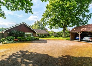 Thumbnail 5 bed detached bungalow for sale in Lower Station Road, Newick, Lewes, East Sussex