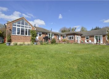 Thumbnail 4 bedroom detached bungalow for sale in Farmside, Fishponds Lane, Westfield, Hastings, East Sussex
