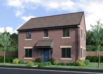 "Thumbnail 4 bed detached house for sale in ""The Buchan Da Alternative"" at Priory Gardens, Corbridge"