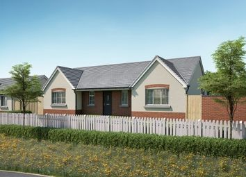 Thumbnail 3 bedroom detached bungalow for sale in Vine Tree Close, Withington