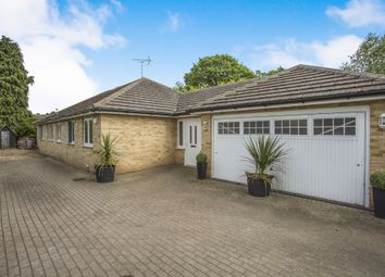 Thumbnail 4 bed detached bungalow for sale in Angela Close, Martlesham, Woodbridge