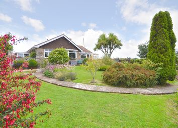 Thumbnail 3 bed detached bungalow for sale in Solent Hill, Freshwater