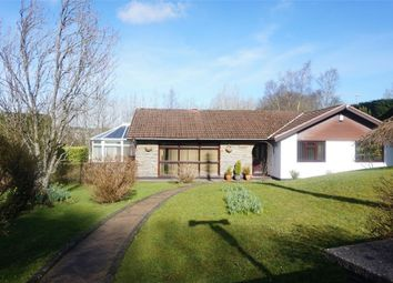 Thumbnail 4 bed detached bungalow for sale in High Street, Pengam, Blackwood