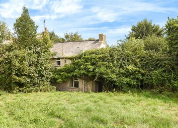 Thumbnail 2 bed semi-detached house for sale in Whitecross, Netherbury, Bridport, Dorset