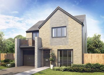 "Thumbnail 4 bedroom detached house for sale in ""The Roseberry"" at Aykley Heads, Durham"