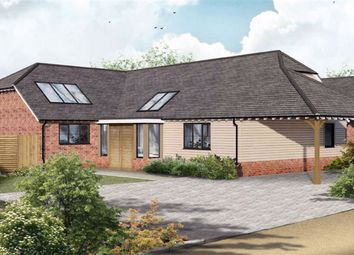 Thumbnail 3 bed detached bungalow for sale in Lees Road, Ashford, Kent