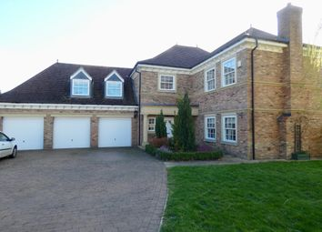 Thumbnail 5 bed detached house for sale in Elm Tree Way, Brandesburton, Driffield