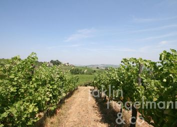 Thumbnail Farm for sale in Italy, Lombardy, Pavia.