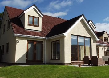 Thumbnail 4 bed detached bungalow for sale in Bethel Place, Nantyglo, Ebbw Vale