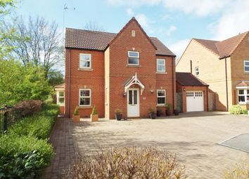 Thumbnail 4 bed detached house for sale in Bluebell Walk, Creswell, Worksop