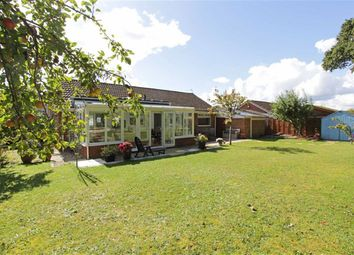Thumbnail 3 bed bungalow for sale in Bramble Way, Bransgore, Christchurch