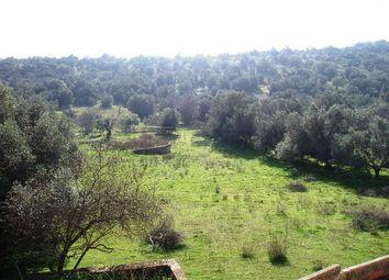 Thumbnail Land for sale in Faro, Albufeira, Paderne