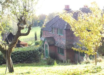 Thumbnail 3 bed cottage to rent in Malthouse Lane, Hambledon, Godalming