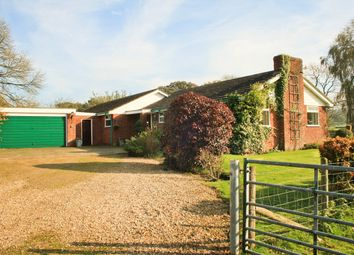 Thumbnail 4 bed detached bungalow for sale in Linwood, Ringwood