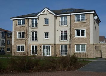 2 bed flat to rent in Flat A, 4 Mackie Place, Elrick, Westhill AB32