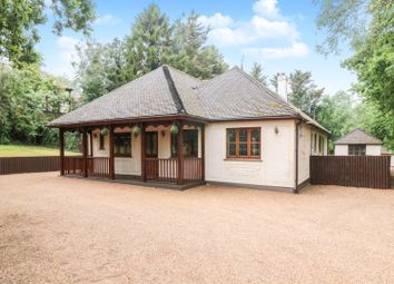 Thumbnail 3 bed detached bungalow for sale in Little Warley Hall Lane, Brentwood