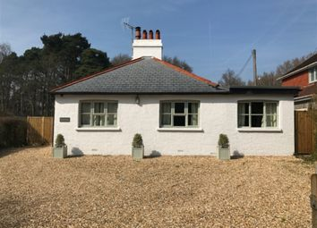 Thumbnail 3 bed detached bungalow to rent in Graffham, Near Petworth, West Sussex