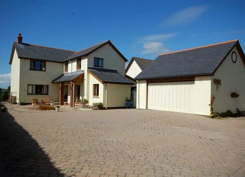 Thumbnail 4 bed detached house for sale in Cold Inn, Kilgetty