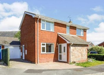Thumbnail 4 bed property to rent in Belton, Loughborough