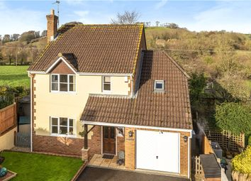 Thumbnail 4 bed detached house for sale in Well Plot, Loders, Bridport, Dorset