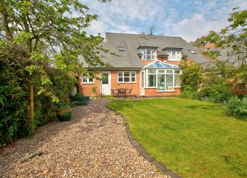 Thumbnail 3 bed semi-detached house for sale in Main Street, Skeffington, 9